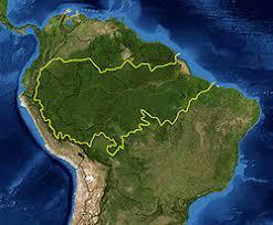%name Brasile, foresta amazzonica in pericolo e ambientalisti uccisi. Firma la petizione internazionale on line