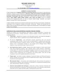 Best Resume Examples Professional by Sample Professional Resume Format For Experienced Resume For