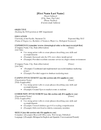 Resume Sample Volunteer by Resume Objective Examples For High Students