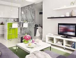 apartments apartment inspiring studio decorating ideas