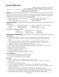 Telecommunications resume objective examples ESL Energiespeicherl  sungen sample resume for project manager position sample project manager resume  summary job samples sample resume for