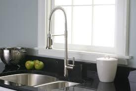 Kitchen Faucets Ebay by Danze Kitchen Faucet Danze D404058bs Parma 1 Handle Pullout