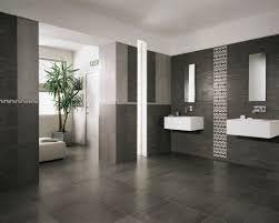 best images about bathroom remodel pinterest contemporary mln bathroom tile ideas