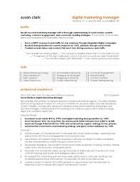 Ecommerce Resume Sample by Marketing Manager Resume Sample Resume Manager Sample Smlf E