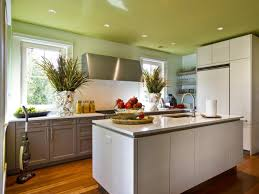 Best Paint For Kitchen Cabinets 2017 by Best Paint Finish For Kitchen Cabinets Innovation Ideas 1 Best