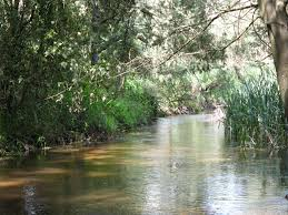 Little Yarra River