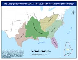 Southeast Map About The Southeast Conservation Adaptation Strategy