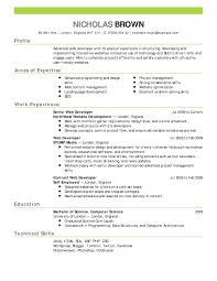 The Best Resume Templates 2015 by It Resume Example Samples Doc Sample P Splixioo