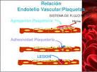 LESION <b>Adhesividad Plaquetaria</b>