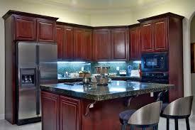 Dark Kitchens With Dark Wood And Black Kitchen Cabinets Home - Kitchen backsplash ideas dark cherry cabinets