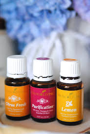 essential oils housewarming gift basket ideas making lemonade