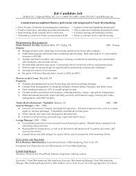resume writing for experienced professional resume writing services hea employment com professional resume example 2