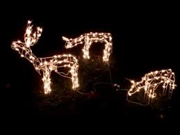 outdoor reindeer lights box opening 3 piece lighted deer family outside christmas