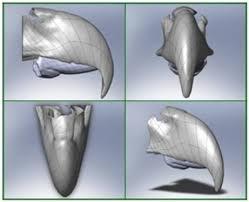 La impresora 3D - Como fabricar en 3D y aplicar en Medicina Images?q=tbn:ANd9GcSQARNXusA5R77eoLG3lqDZHAfdKAqCrWtSnjGKkdTSVwiZM6Dw