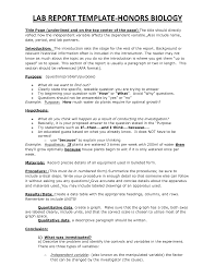 Monthly Report Template Word     monthly report template       how to