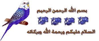 سيدات من تاريخ مصر images?q=tbn:ANd9GcS