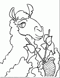 astounding cute llama drawing with llama coloring pages