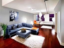 Apartment Living Room Decorating Ideas On A Budget With Exemplary - Cheap apartment design ideas