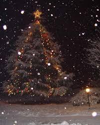 Natale L'albero di Natale: storia, tradizione e curiosità Images?q=tbn:ANd9GcSRTO0kA4NQmyLaz0Y2tQTwtSHTC6qwRsQgsj7dW0aSqSVBHUlx