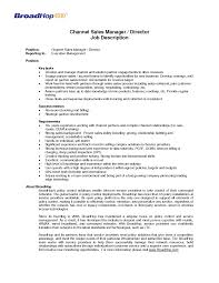 Sample Of Sales Manager Resume by Job Wining Channel Sales Catering Sales Manager Resume For