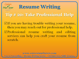 Guidelines for writing a Professional Resume   CV   Career     Career Nurturer Professional Resume Service in India