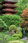 Zen Gardens | Really Garden Proud