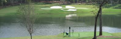 Backyard Golf Hole by Tour Greens Backyard Golf Courses
