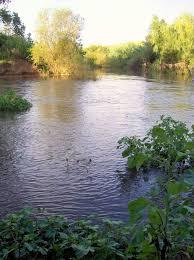 Paterson River