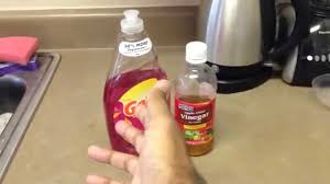 get rid of fruit flies and gnats and all small flying bugs watch