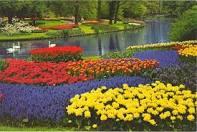 فصل الربيع Images?q=tbn:ANd9GcSTryKayU8r1bb0Vep0kidnN5AL3dU8SqaBJQ1f5Uw3LpLIHqqpNVQVBn3S