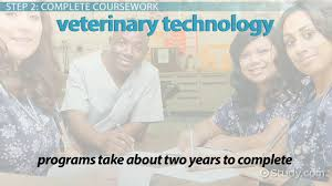 Courseworks columbia edu x ray history timeline
