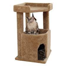 carpeted cat tree condo carpet vidalondon