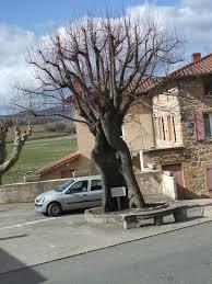 Sarcey, Rhône