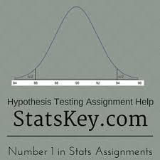 Hypothesis Testing Stats Homework Help   Statistics assignment and     Statistics Assignment Help Hypothesis Testing Assignment Help