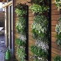 Garden Design Galleries: Vertical Gardening Ideas