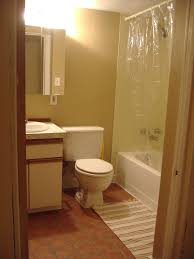the basement apartment bathroom remodel take everyfrogs blog