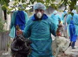 Enfermedades mortales seguimiento en Uganda, India, Filipinas, Indiana, Indonesia Images?q=tbn:ANd9GcSVHTIH093BSBIbamQzm2CWyC2Pvv2j05VBIdArD7ZzC_AqMxNALA