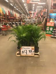 home depot april 1 spring black friday behr deal gcg merchandising gcgservice twitter