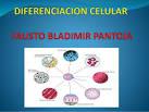<b>DIFERENCIACION CELULAR</b> proceso