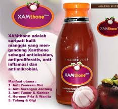 xamthone plus