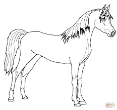 arabian horse coloring page free printable coloring pages