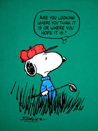 2647 Best The Peanuts Collection Images On Pinterest Peanuts 79 Best Adexperts Images On Pinterest Golf Courses Golf Stuff