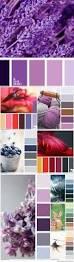 Color Swatches Paint by 206 Best Color Palletes Pantone Images On Pinterest Colors