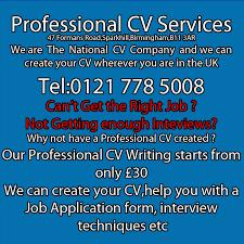 professional cv writing   professional cv writer  professional cv     We offer professional CV writing services