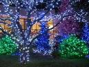 Outdoor Christmas Lights Ideas Gallery | Building Home And Bar