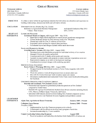 purchase resume format basic format resume template analytical chemist resume example proper resume examples more proper resume format resume formatting