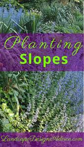 garden rockery ideas the 25 best steep hillside landscaping ideas on pinterest