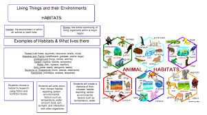 Living Things and their Environments  Food Chains  amp  Habitats