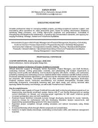 Examples Of Professional Summary For Resume by Summary On A Resume Examples Executive Assistant Resume Example