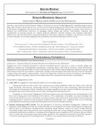 resume summary examples entry level resume sample of business analyst business analyst resume summary examples business resume examples online resume builders business analyst resume sample pg